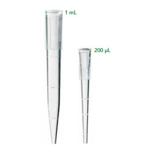 200µL Large Orifice (Wide Bore) Tips, Racked, Non-Sterile, Hinge Racked Tips 10rk/pk, 5pk/cs CS/48