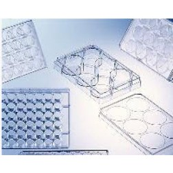CELL CULTURE MULTIWELLPLATE, 24 WELL, PS, CLEAR, LID WITH CONDENSATION RINGS, STERILE, 5 PCS./BAG