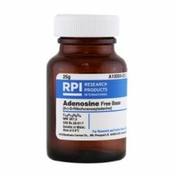 Adenosine, Free Base [9-B-D-Ribofuranosyladenine], 25 Grams