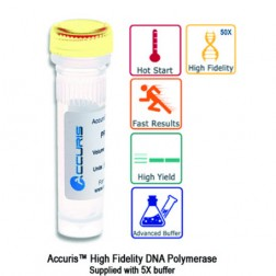 Accuris High Fidelity DNA Polymerase, 200 units, EA /1