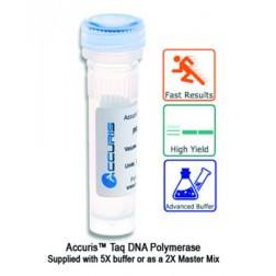 Accuris Taq Polymerase, 1000 units, EA /1