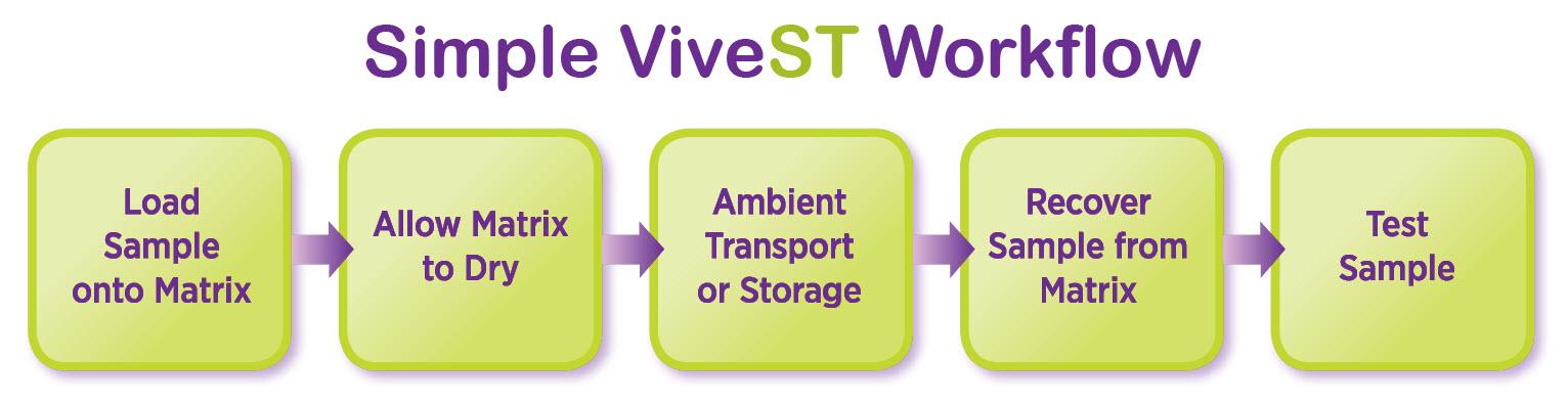 Simple-ViveST-Workflow